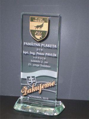1 Plaketa S Plastickym Logom V Patine